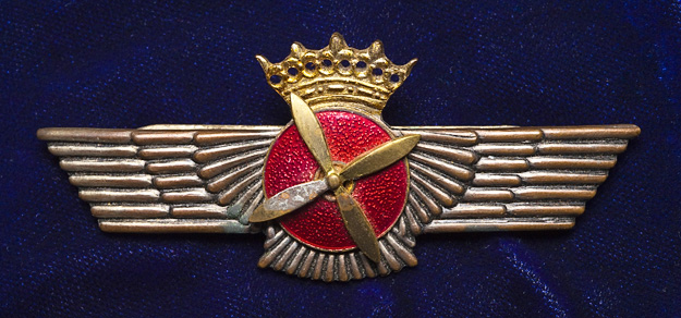 Spanish pilot wings. WWII vintage.