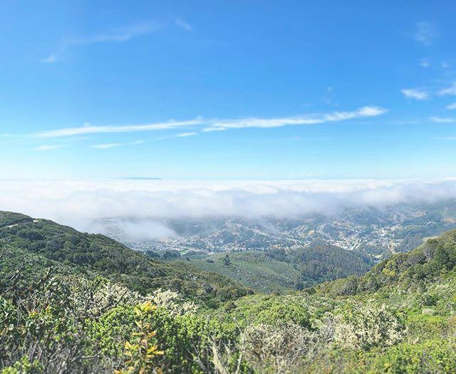 Monday on Planet Earth. 🔵  #tgicalifornia #adventuresabovethefogline