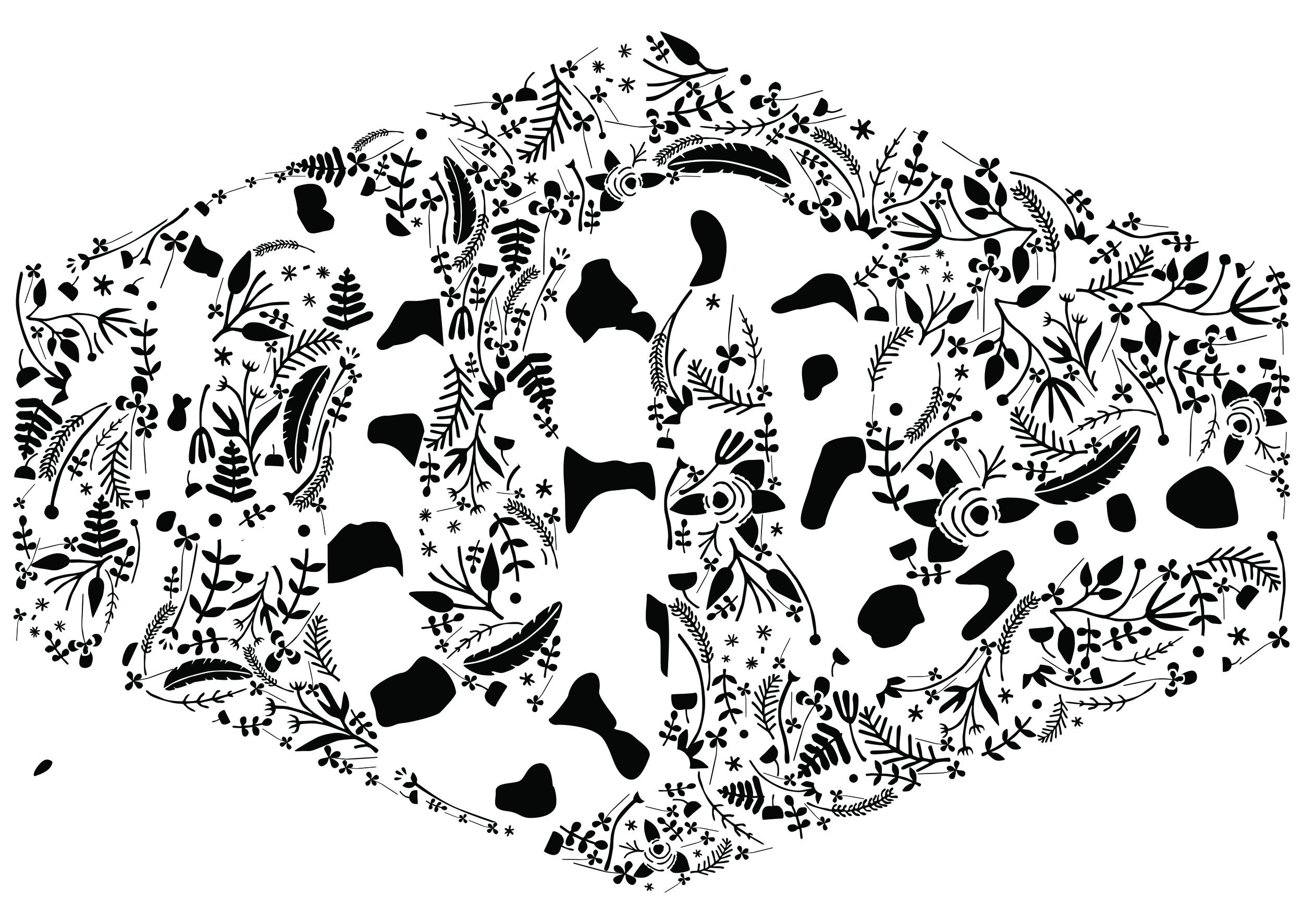 SerpentSELE-04.jpg