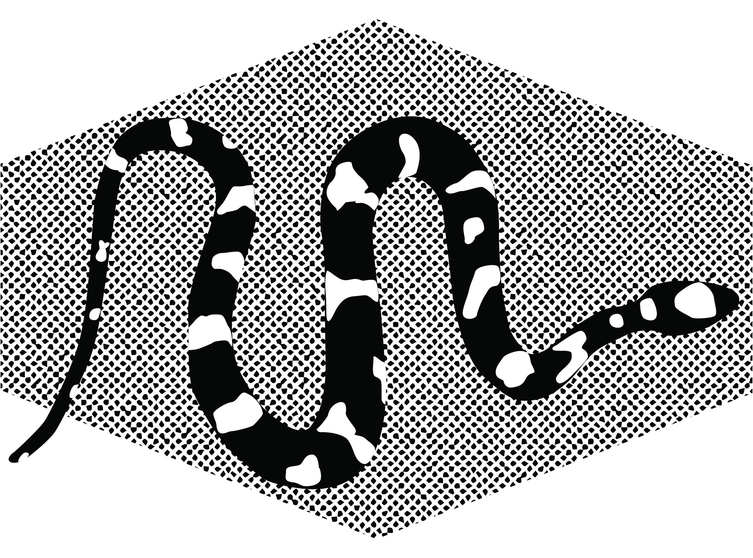SerpentSELE-02.jpg