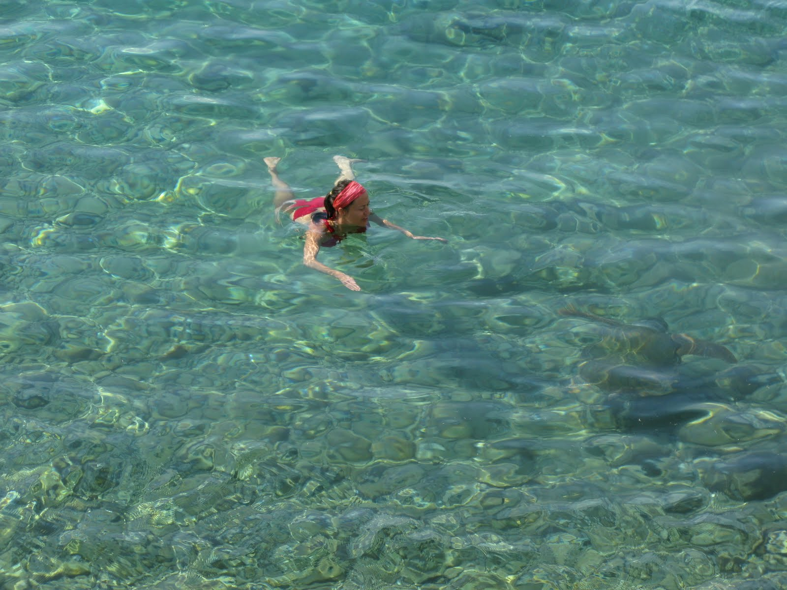 cooling swim in the clear water