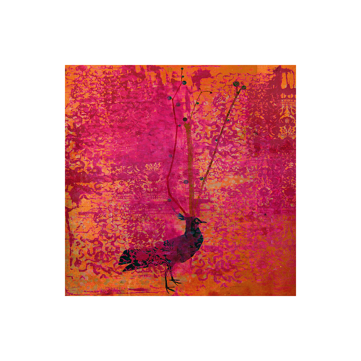 technocolor bird  frame.jpg