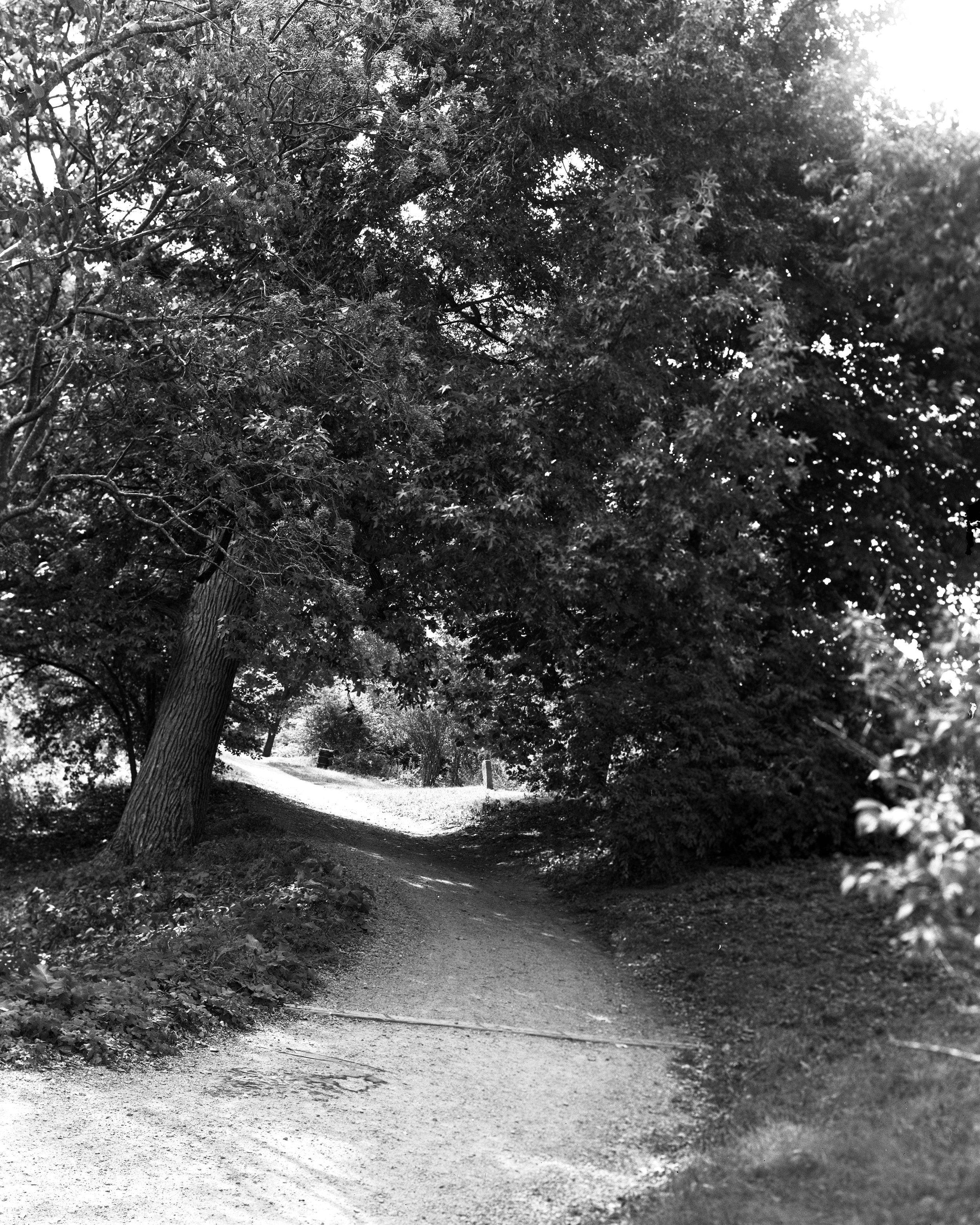 arboretum 10.jpg