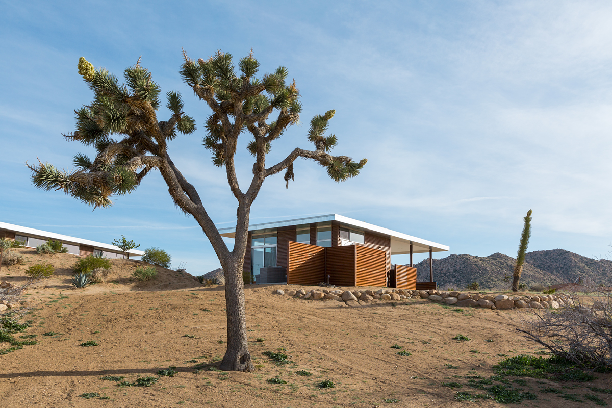 Homestead Modern No. 1 Casita-4.jpg
