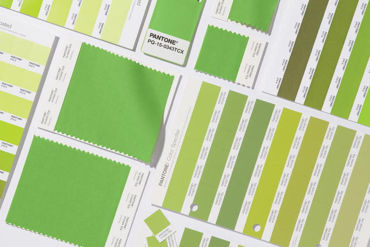 3066350-slide-4-pantone-announces-the-2017-color-of-the-year-greenery.jpg
