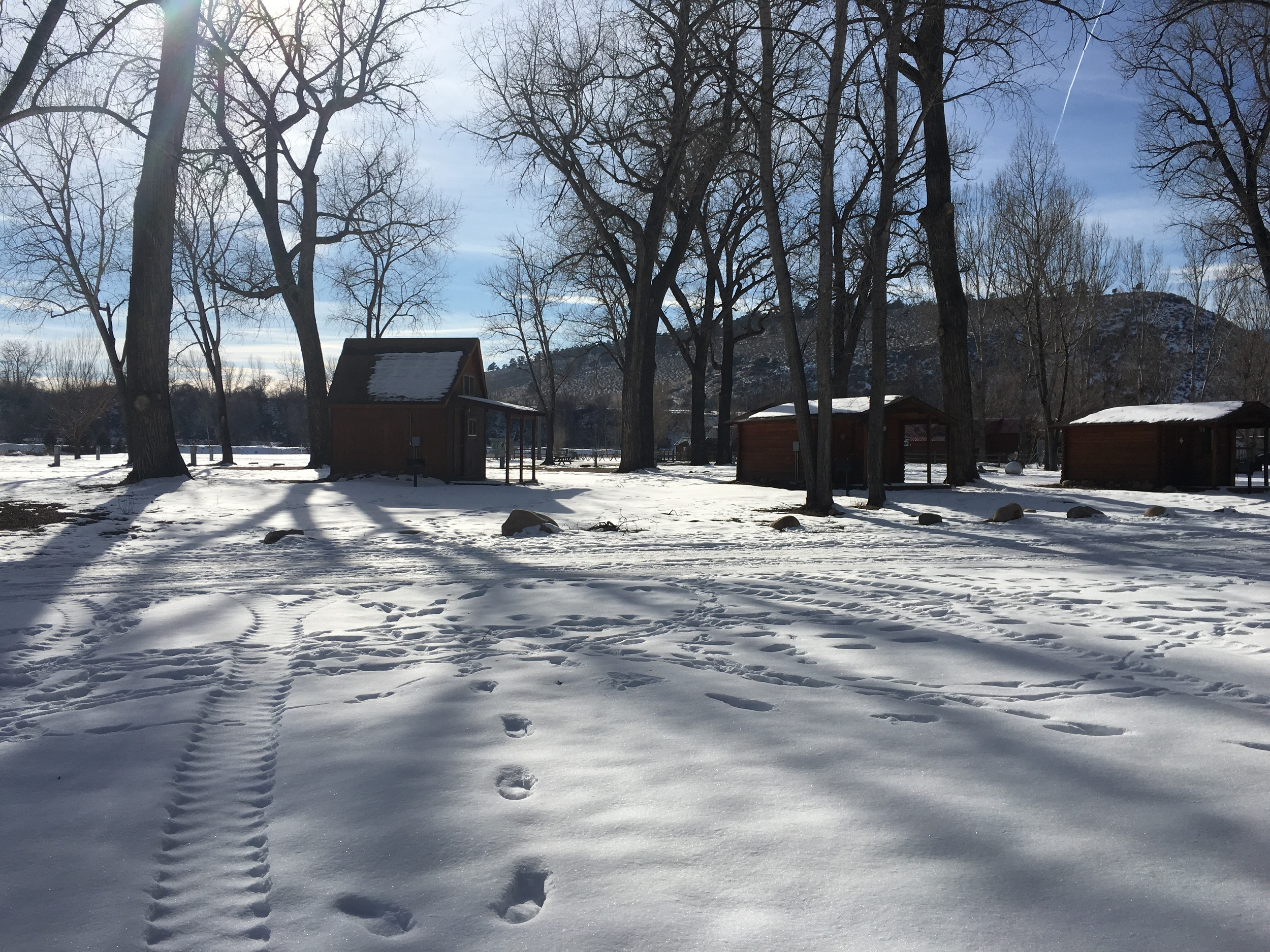 Here's another view of the neighboring cabins from the back of space #157. To the left and behind of the cabins are additional partial hookup spaces and tent camping sites.