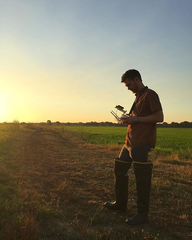 Capturing aerials at the @rueandforsmanranch rice fields for @nextgenerationfoods. 🍚 #seastandproductions #positioninteractive