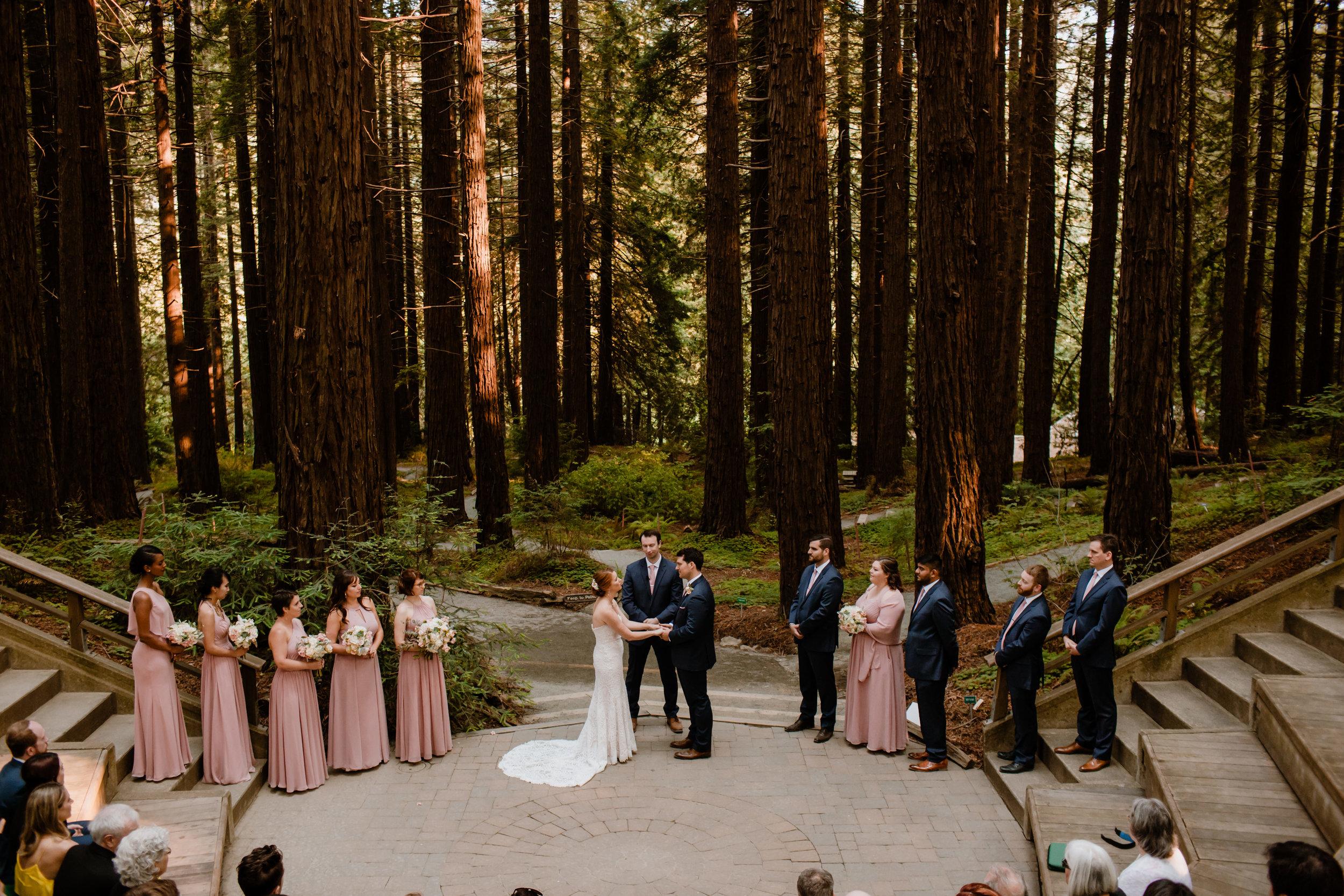 Shauna_and_Craig_UC_Berkeley_Botanical_Garden_Wedding_-_Eve_Rox_Photography_-440.jpg