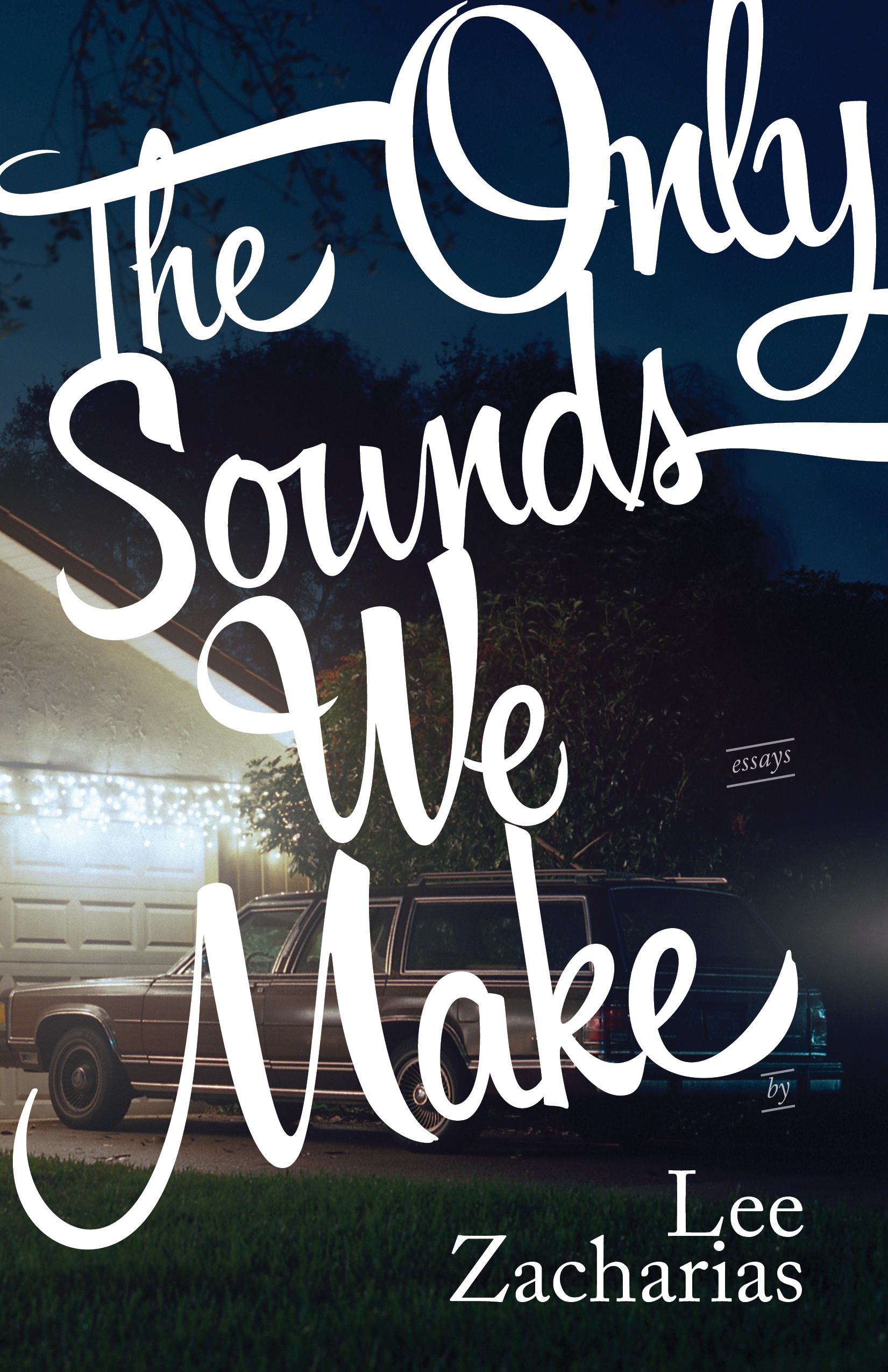 The Only Sounds We Make | Lee Zacharias