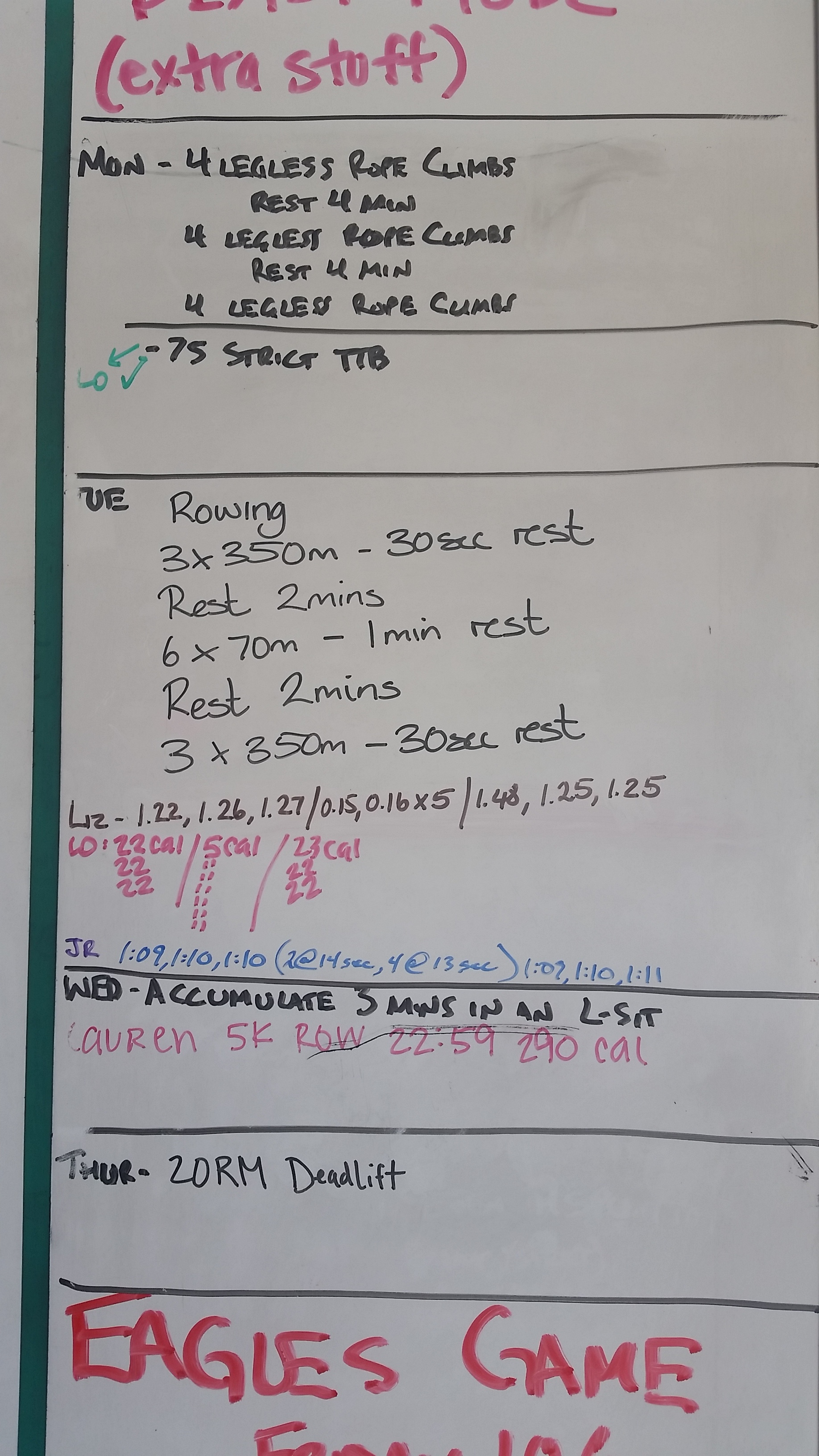 20151011 Extra Work Strict Toes to Bar Rowing L-sit