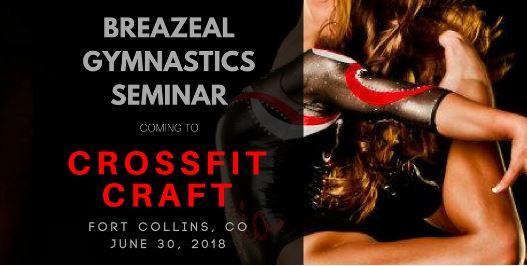 Breazeal Gymnastics Seminar.JPG