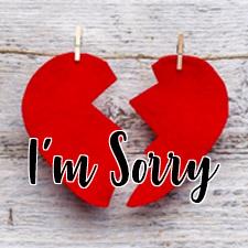 im sorry blog.jpg