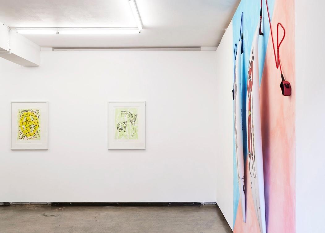 Paired  installation view, photo credit: Zan Wimberley