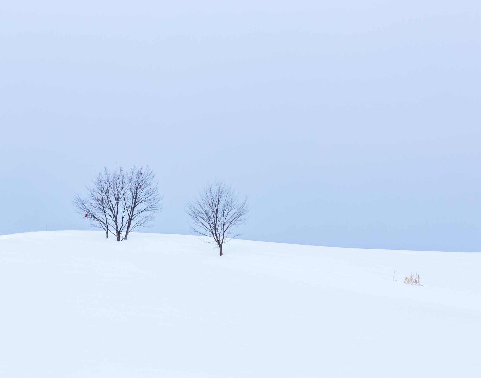 4. Hokkaido, Japan