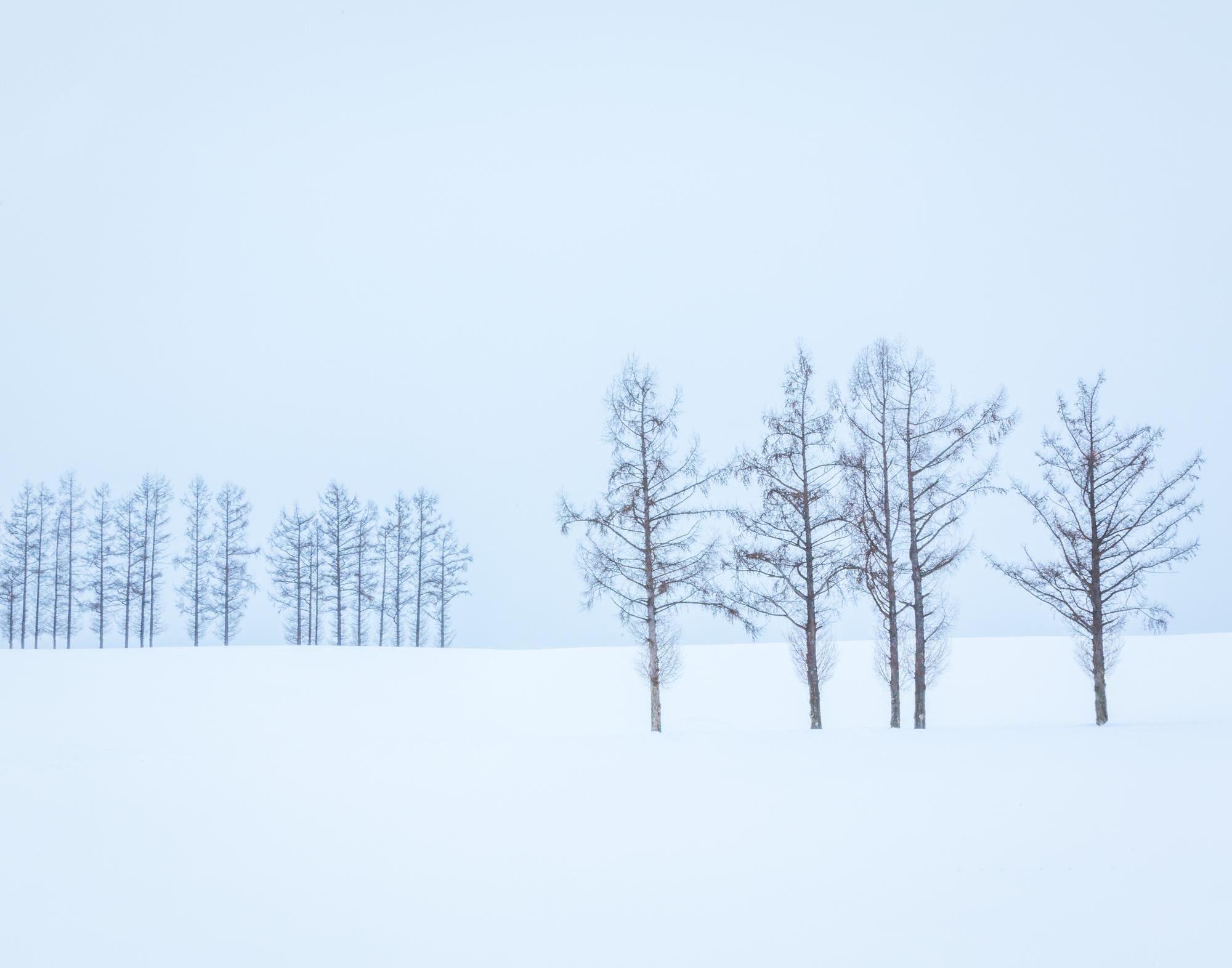 6. Biei, Hokkaido, Japan