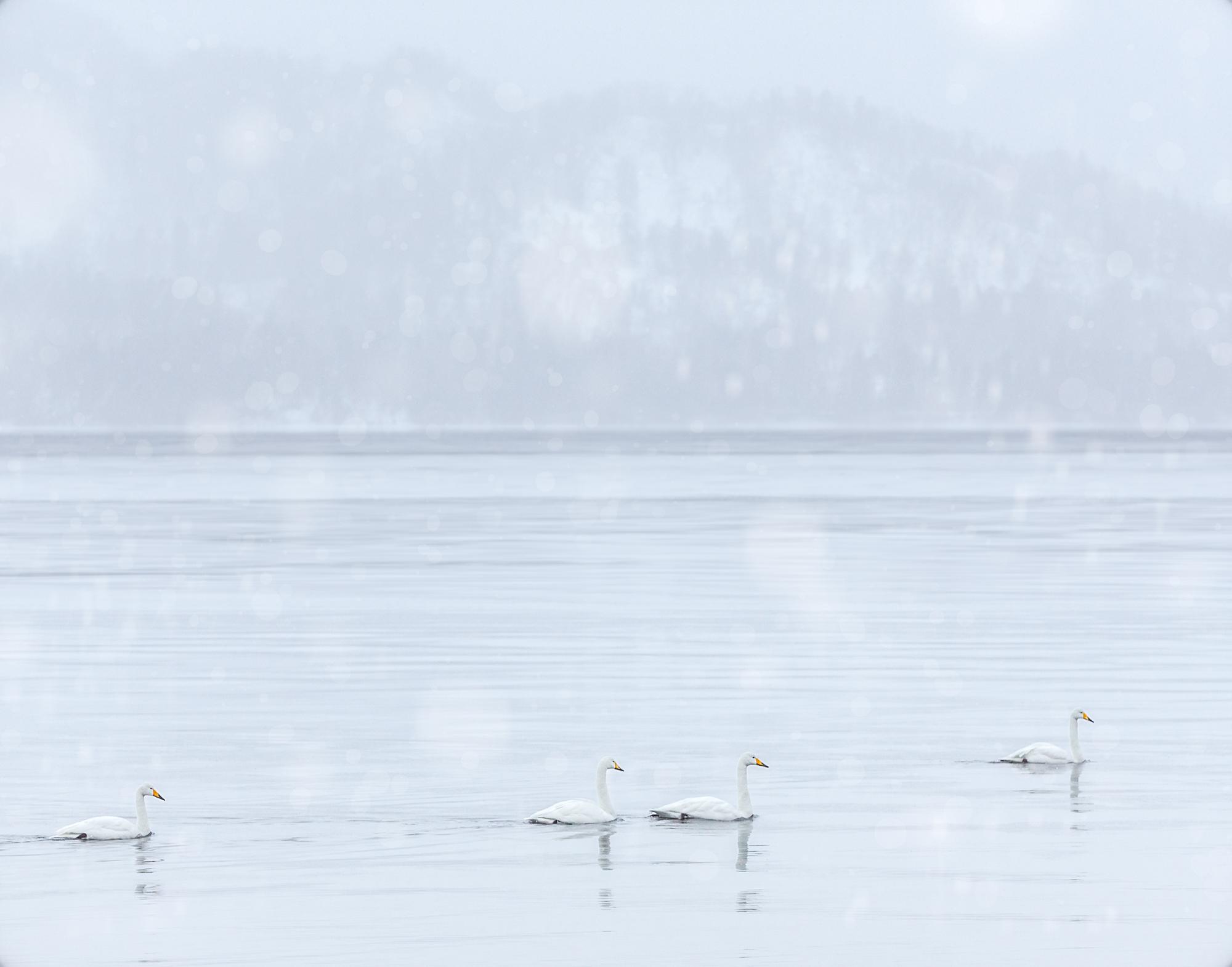 9. Lake Kusharro, Hokkaido, Japan