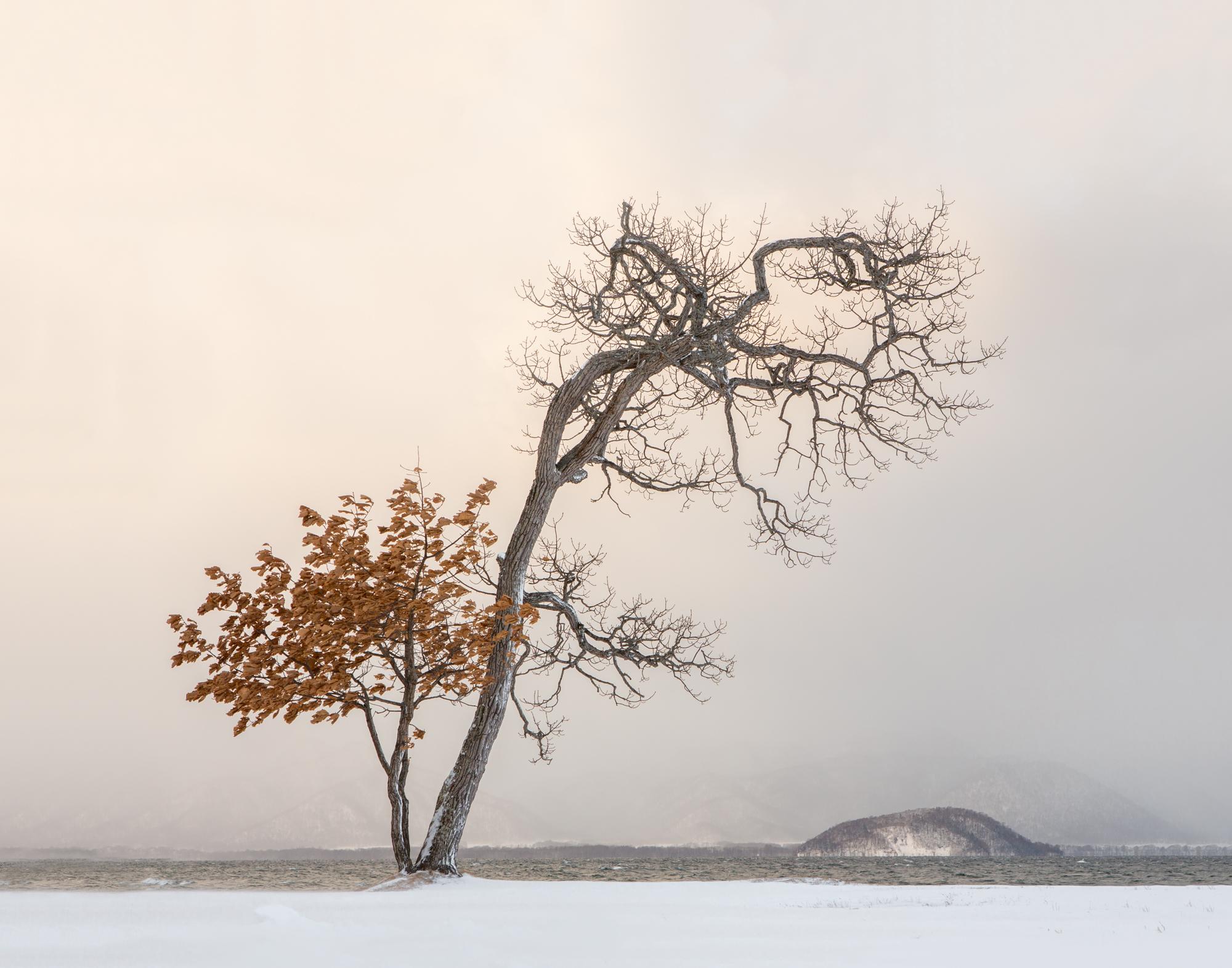 7. Lake Kusharro, Hokkaido, Japan