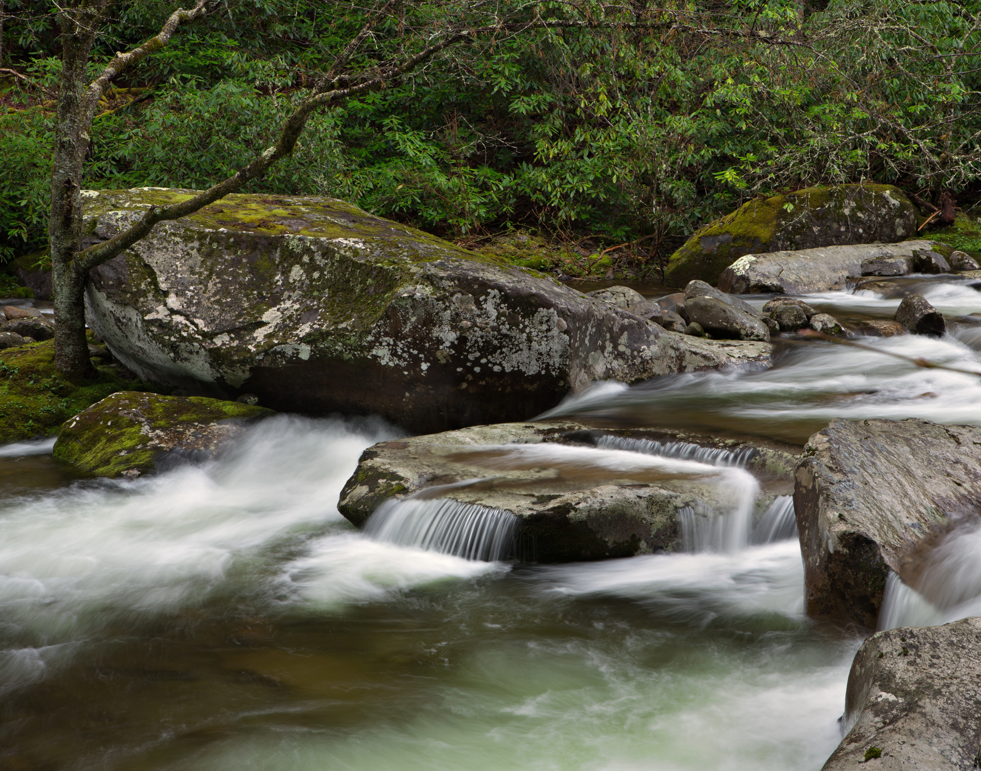 28. Big Creek, Great Smoky Mountains National Park, Tennessee