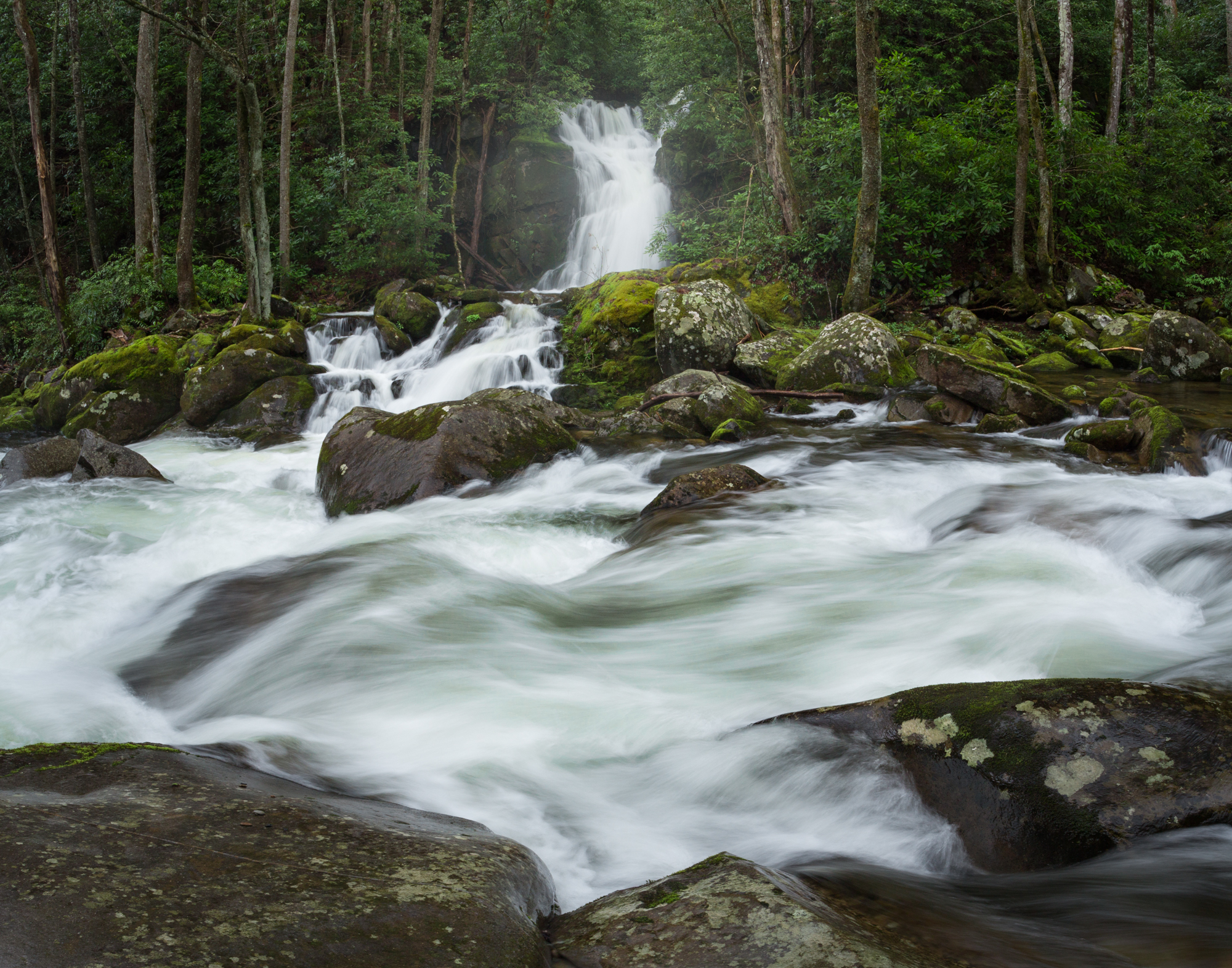 16. Mouse Creek Falls, Big Creek, Great Smoky Mountains National Park