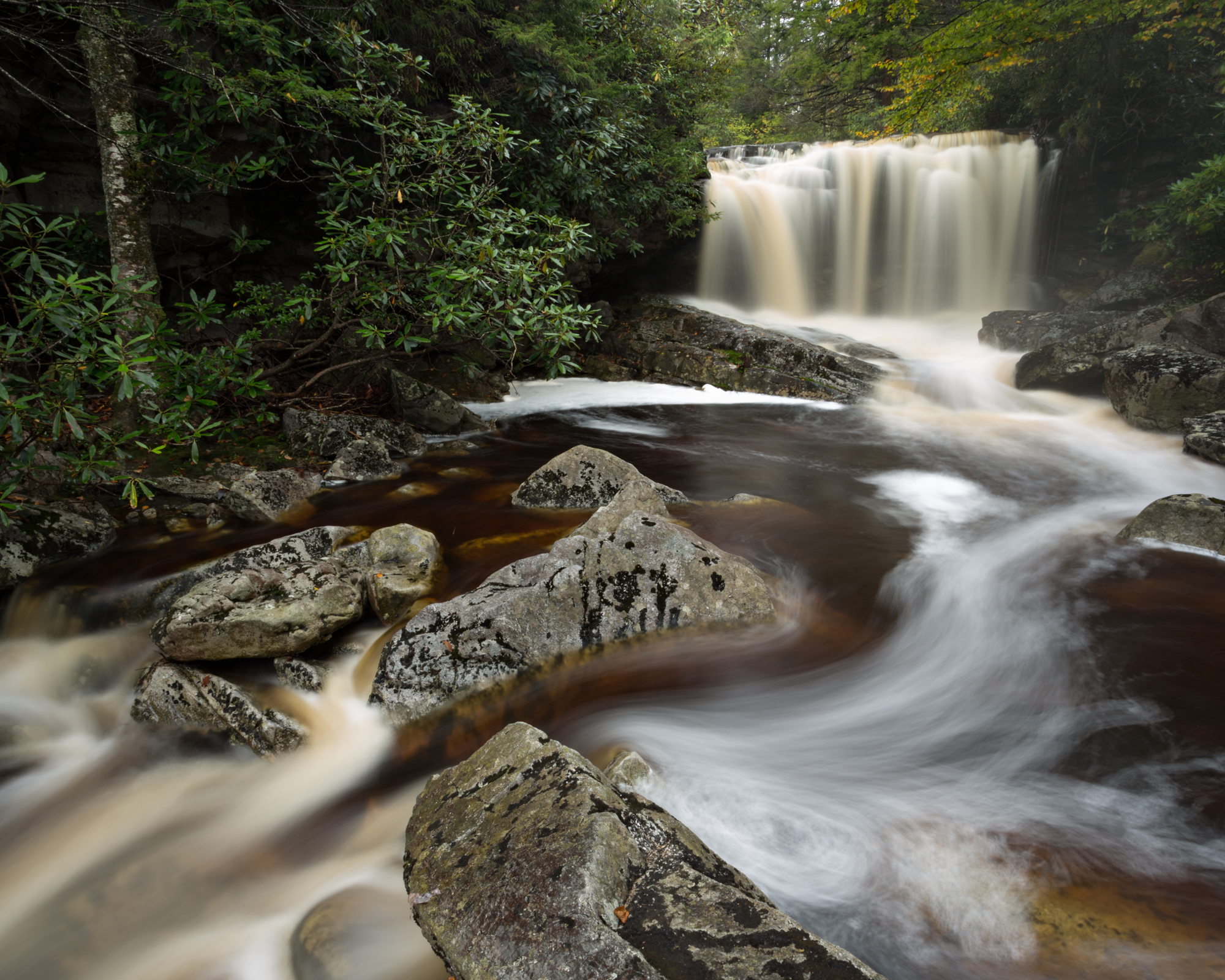 27. Big Run, Monongahela National Forest, West Virginia