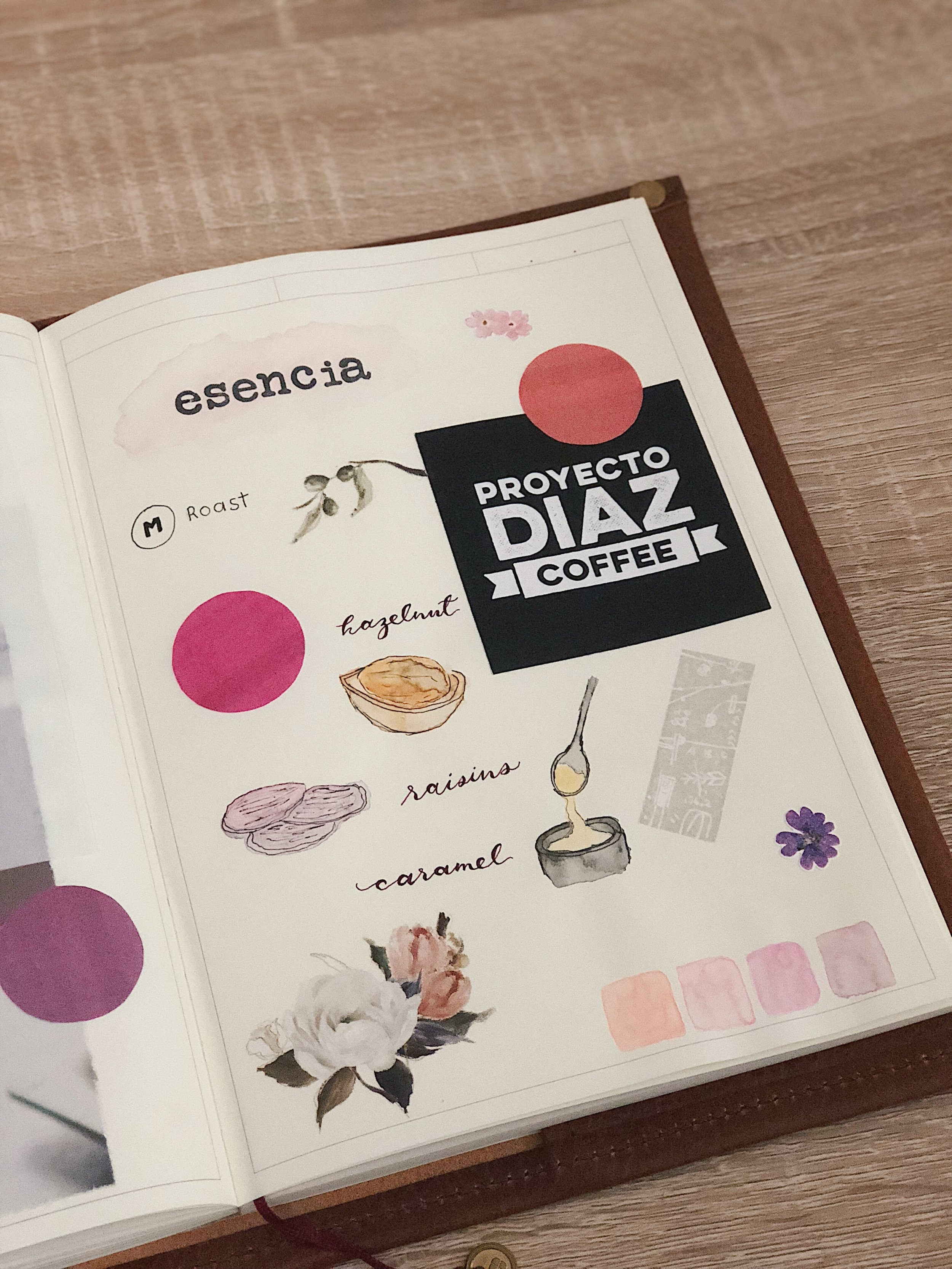 Illustrating the flavors of Proyecto Diaz's Esencia blend.