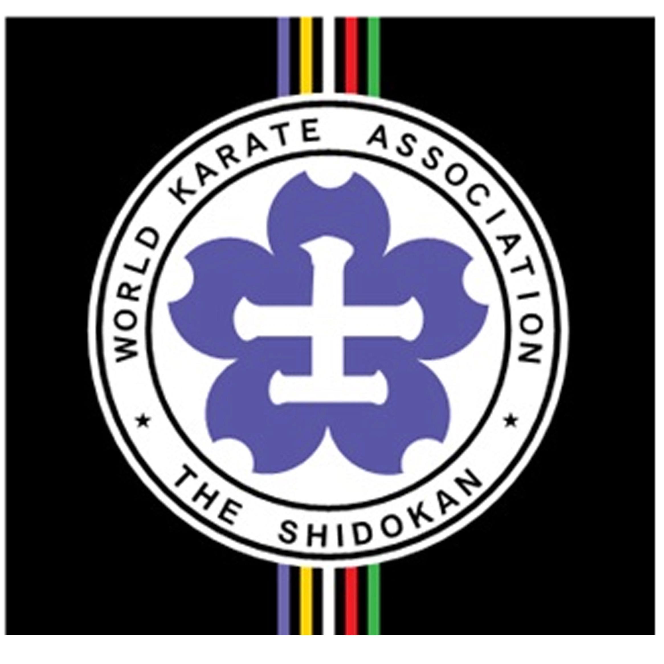 HK branch flag (2).jpg