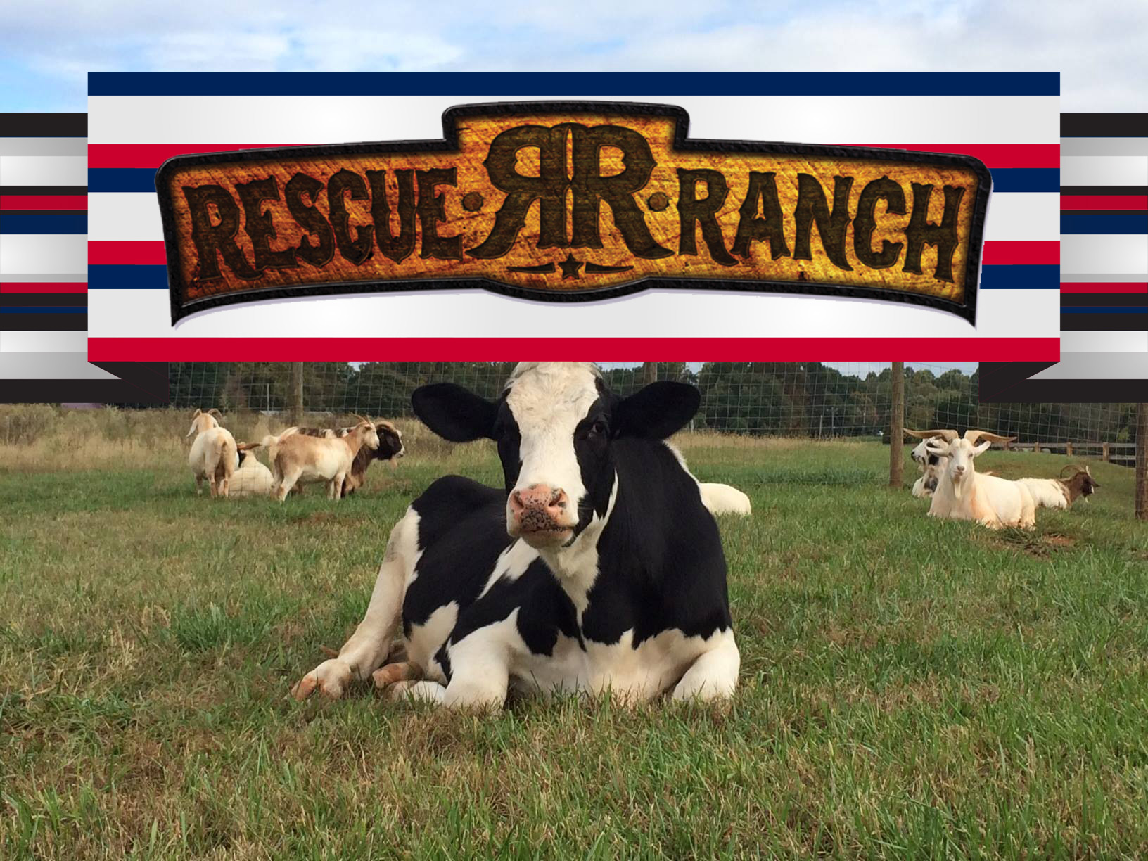 Rescue Ranch.jpg