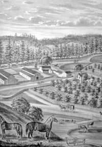 An 1879 etching of Claus Spreckels' summer farm in Aptos. Famous race horse is in the foreground, and in the back on the right you can see the close end of his race course. Present-day Polo Drive follows the outlines of the race course.