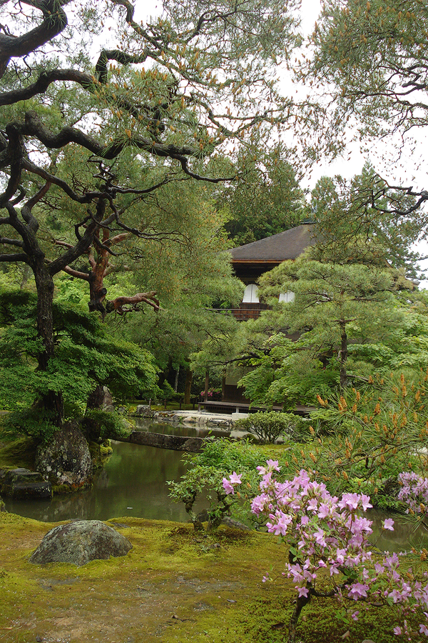 Ginkakuji, Kyoto. We will prepare you for your visit to some of the grandest temples in all of Japan.