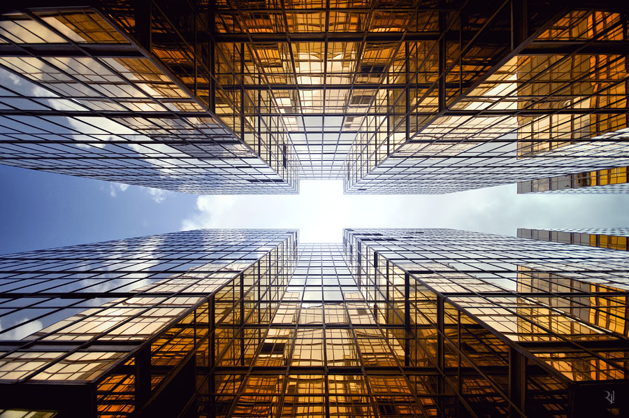 Vertical Horizon #38