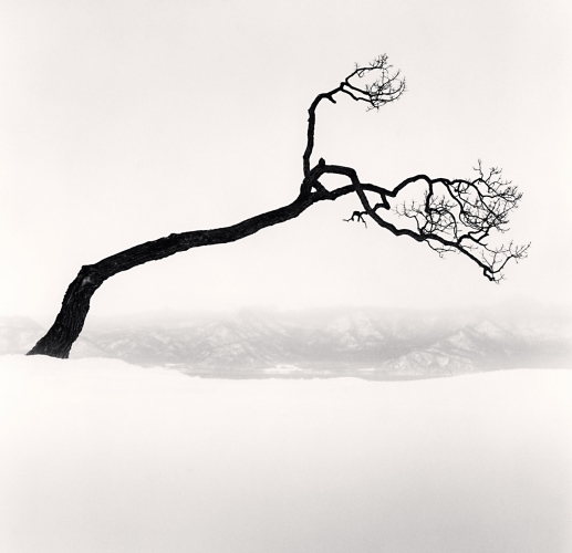 Michael Kenna, Kussharo Lake Tree, Study 9, Kotan, Hokkaido, Japan. 2009. Silver Gelatin Print, Edition of 45