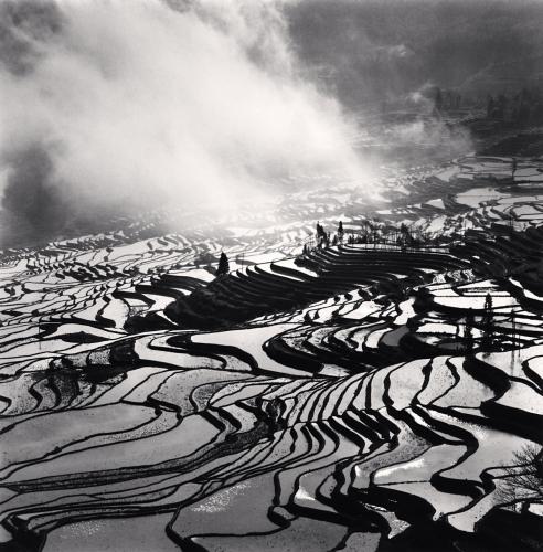 Yuanyang, Study 4, Yunnan, China. 2013