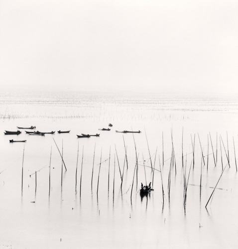 Seaweed Farms, Study 2, Xiapu, China. 2010