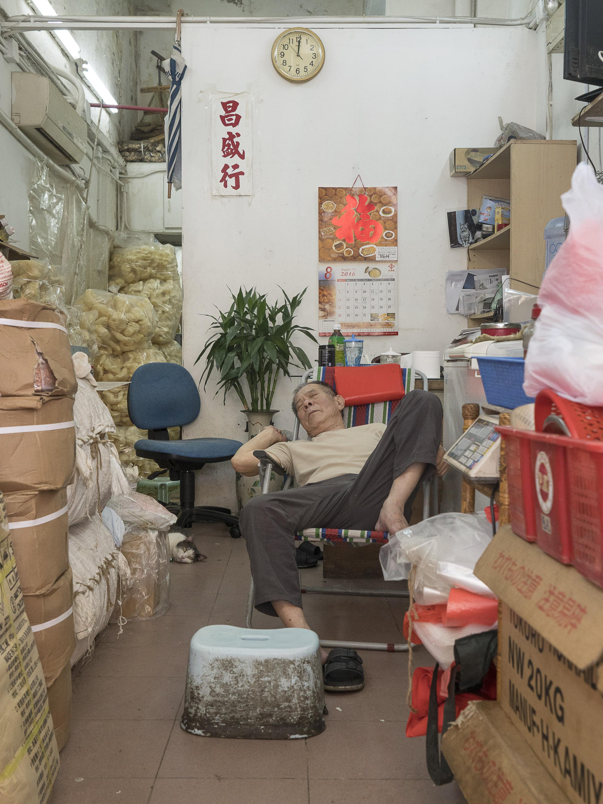 M. Heijnen, HK Shop Cats #10.jpg