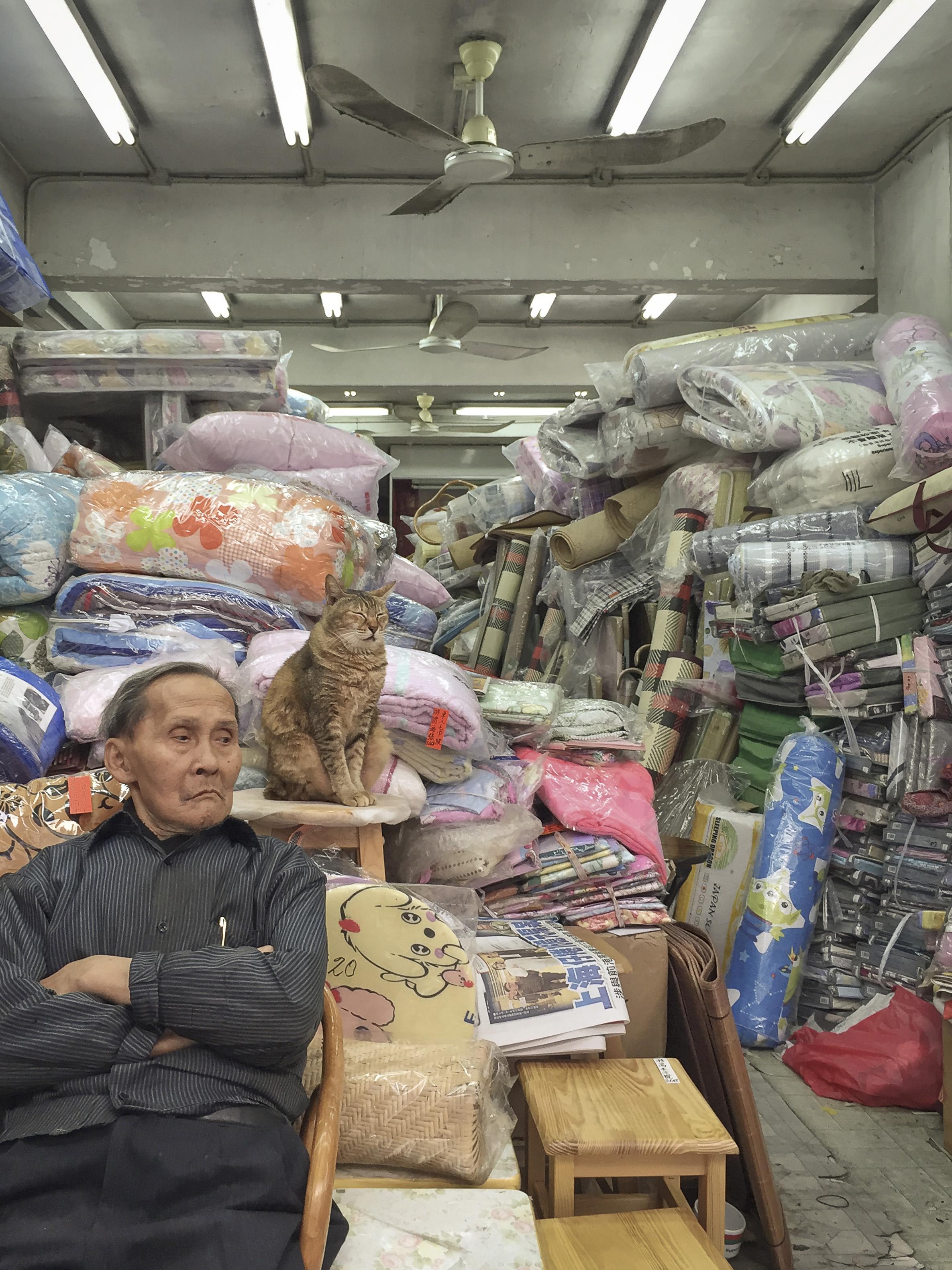 M. Heijnen, HK Shop Cats #14.jpg