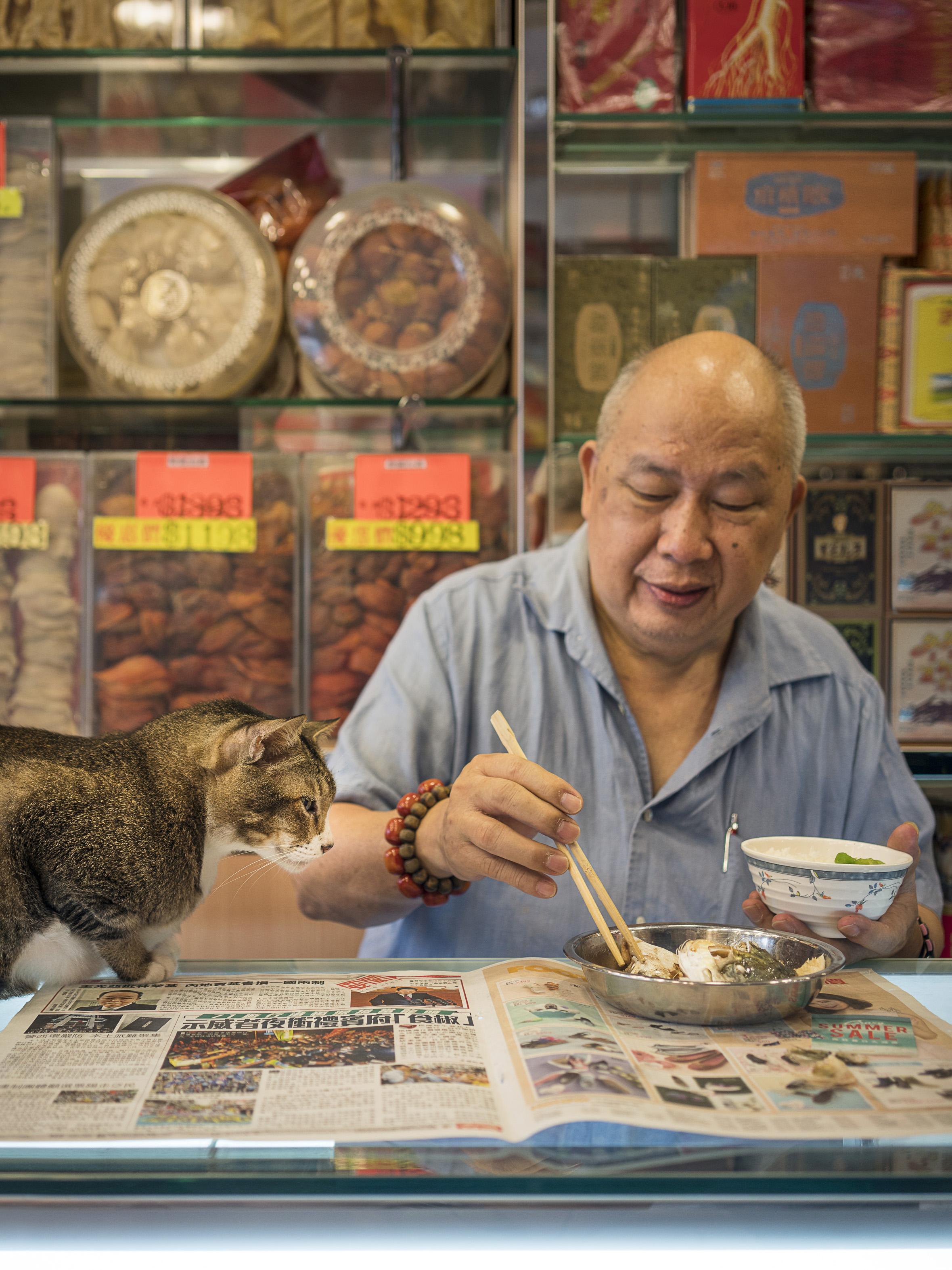 M. Heijnen, HK Shop Cats #22.jpg