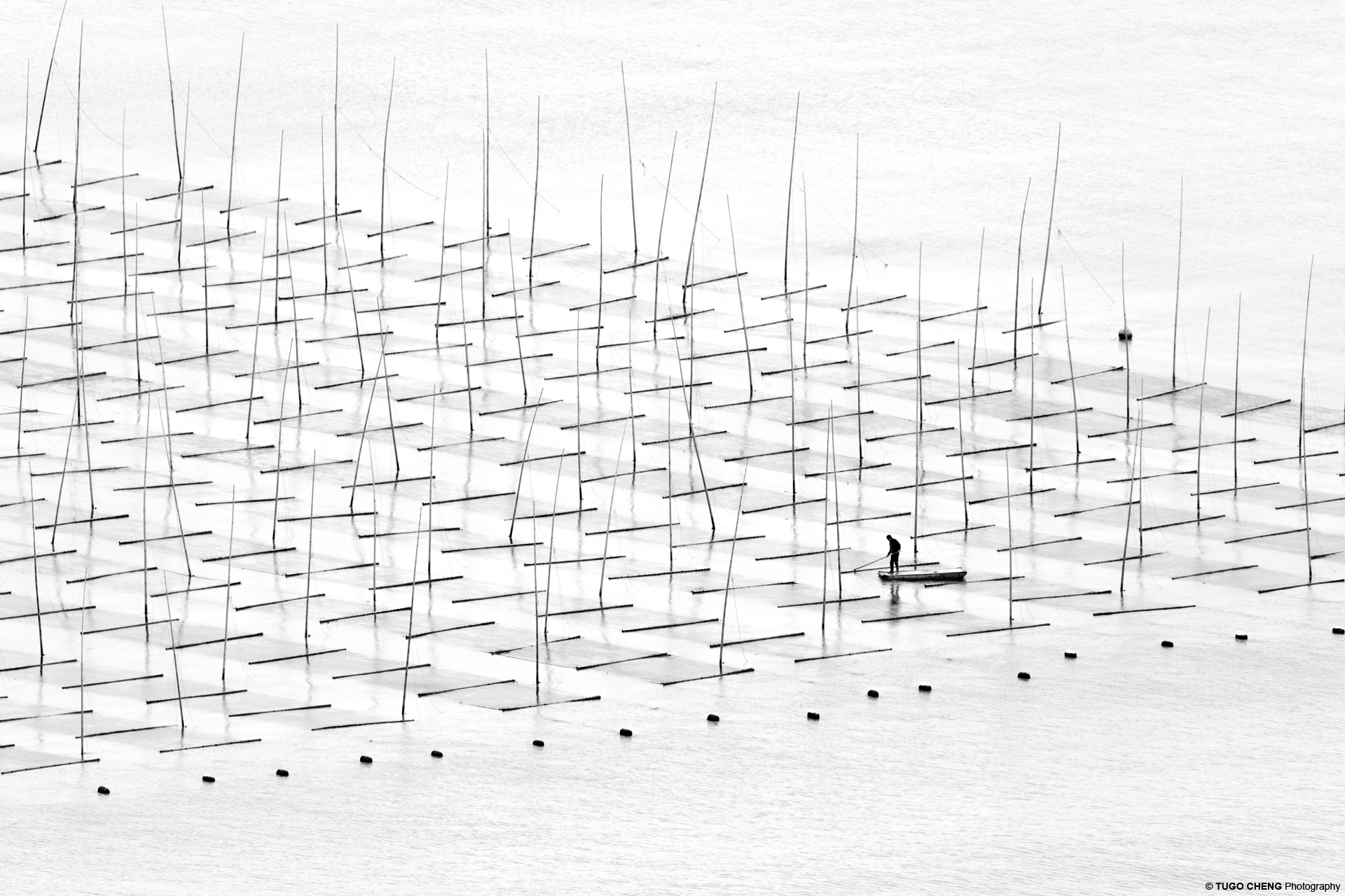 Coastal geometries_Farming the Sea.jpg