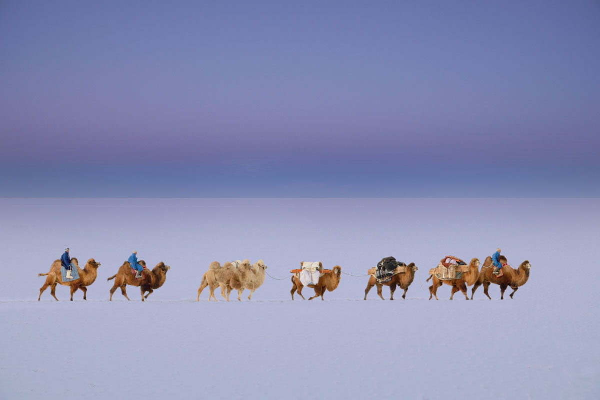 marc-progin-the-caravan-of-the-dawn-web.jpg