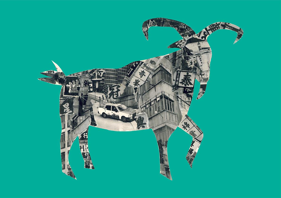Hong Kong Goat