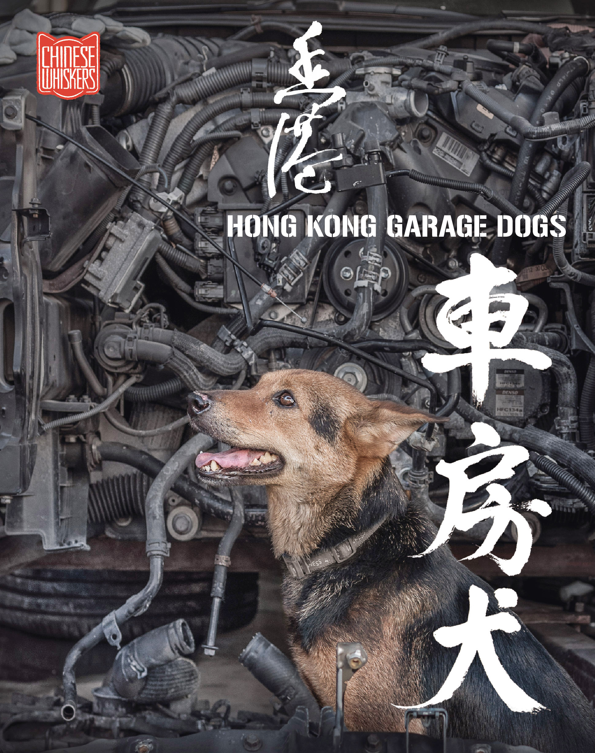 00 HK Garage Dogs book cover flat.jpg