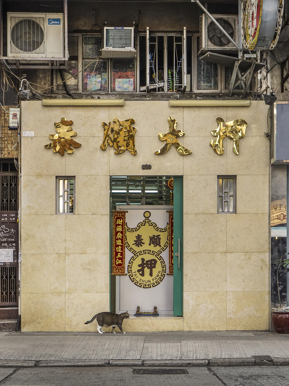 M. Heijnen, HK Shop Cats #60.jpg