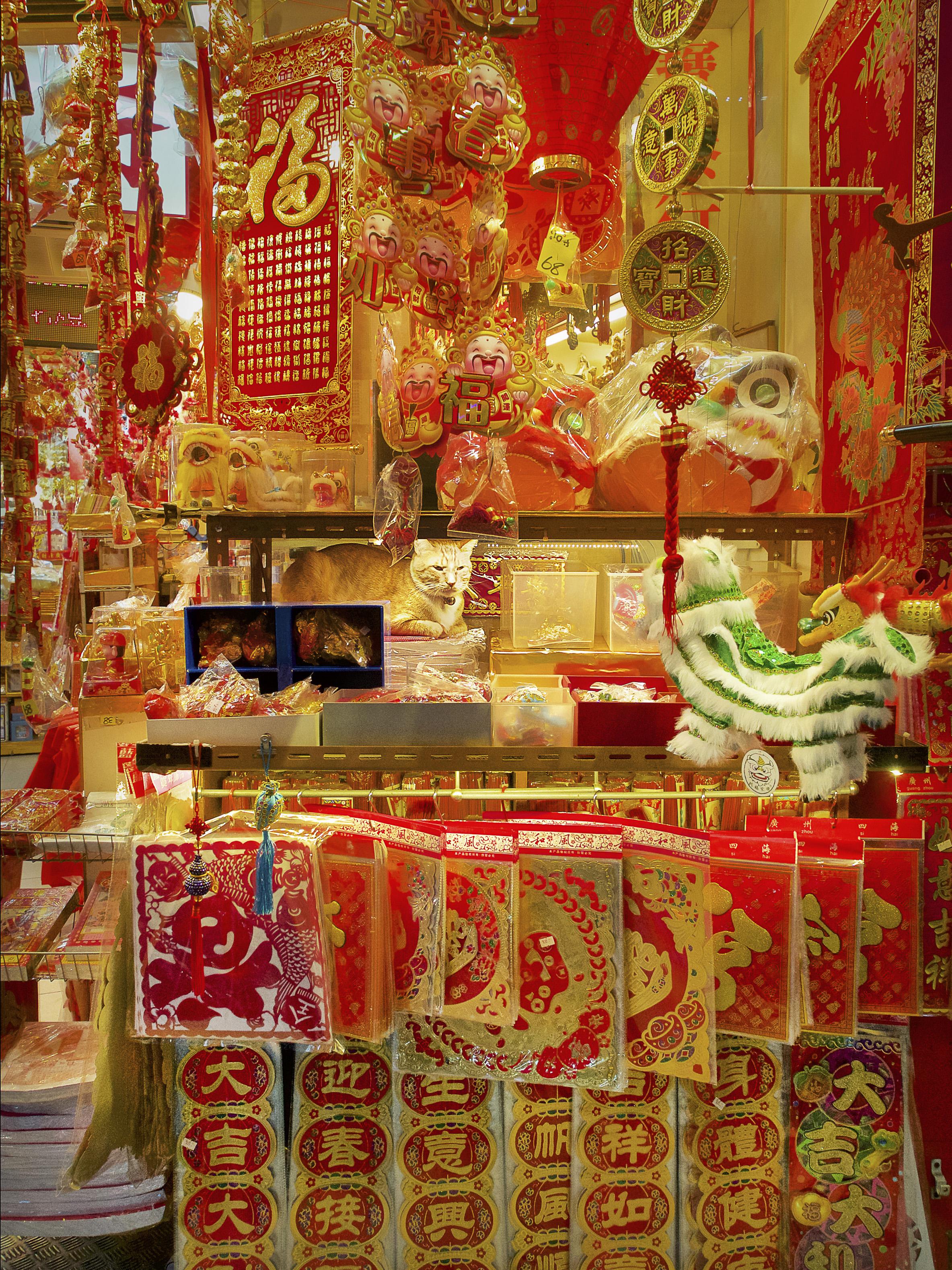 M. Heijnen, HK Shop Cats, 'Lucky Cat'.jpg