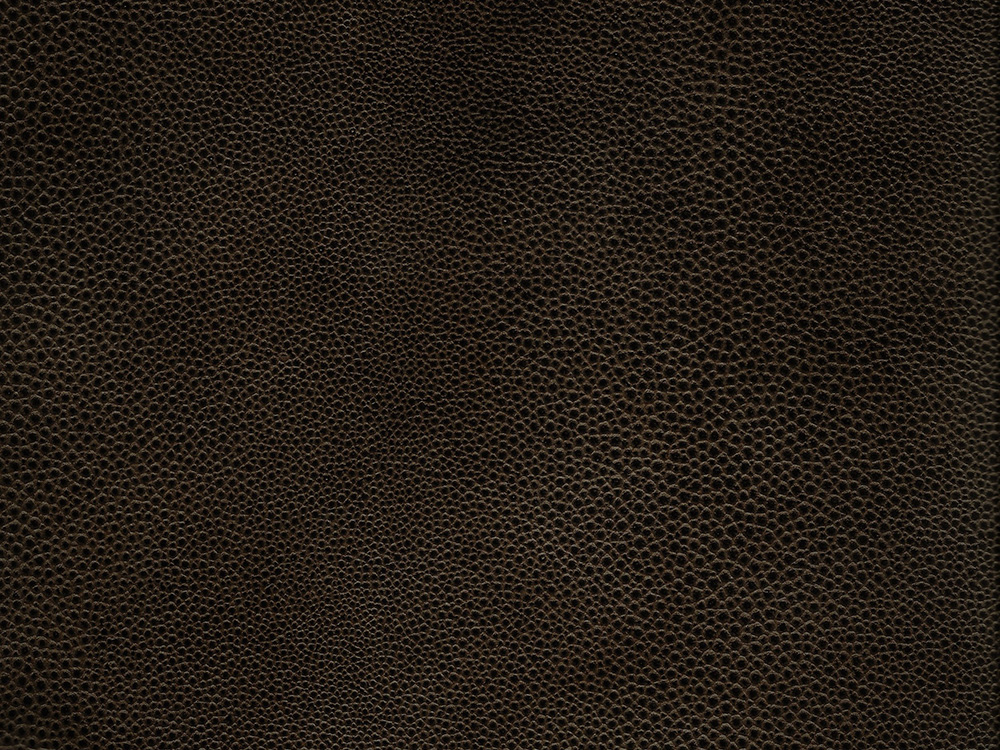 BLACK AND GOLD FAUX SHAGREEN