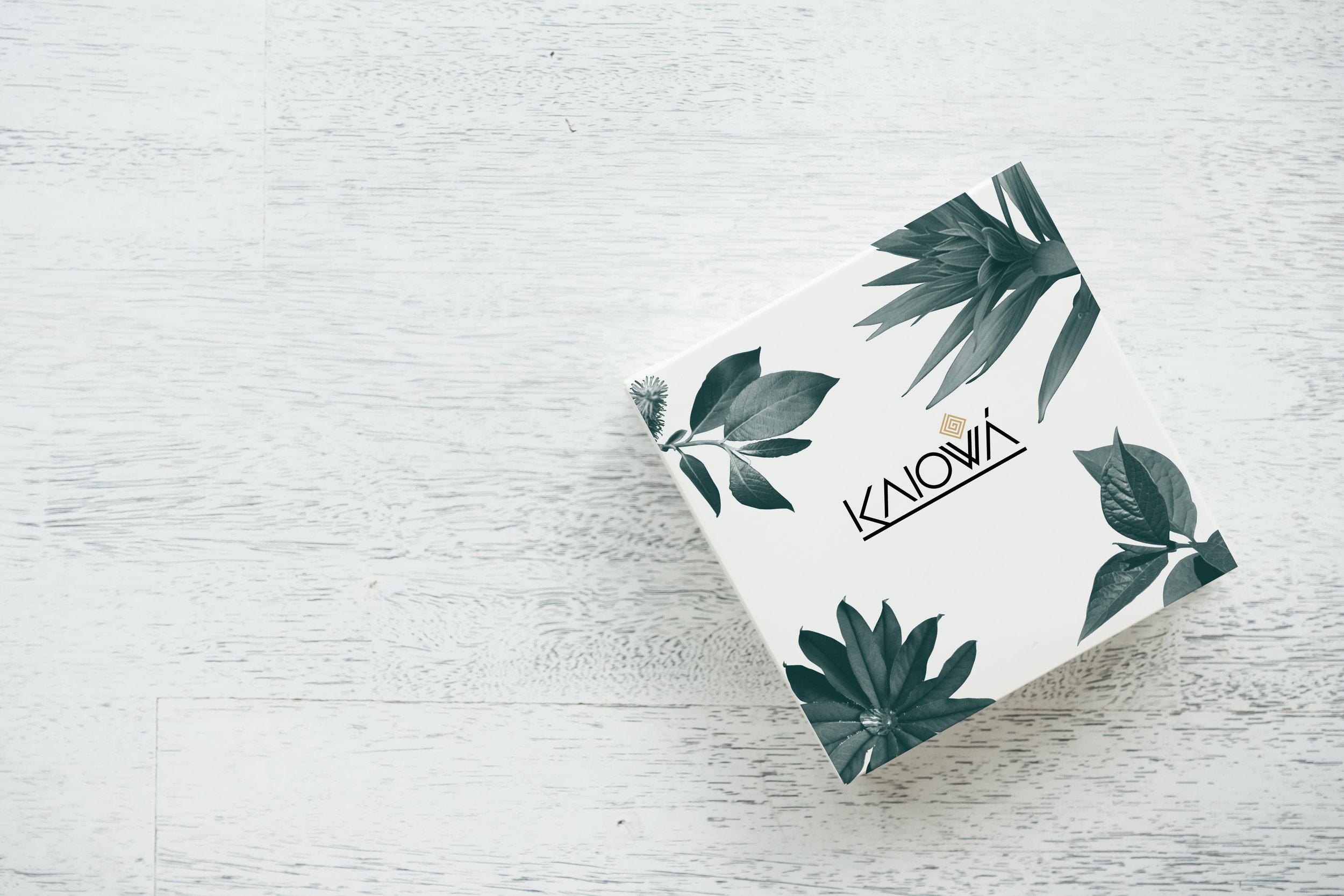 KAIOWA BOX.jpg
