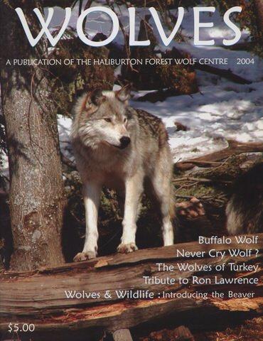 Wolves2004.jpeg