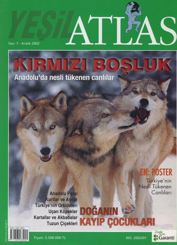 Atlas2002_2.jpeg