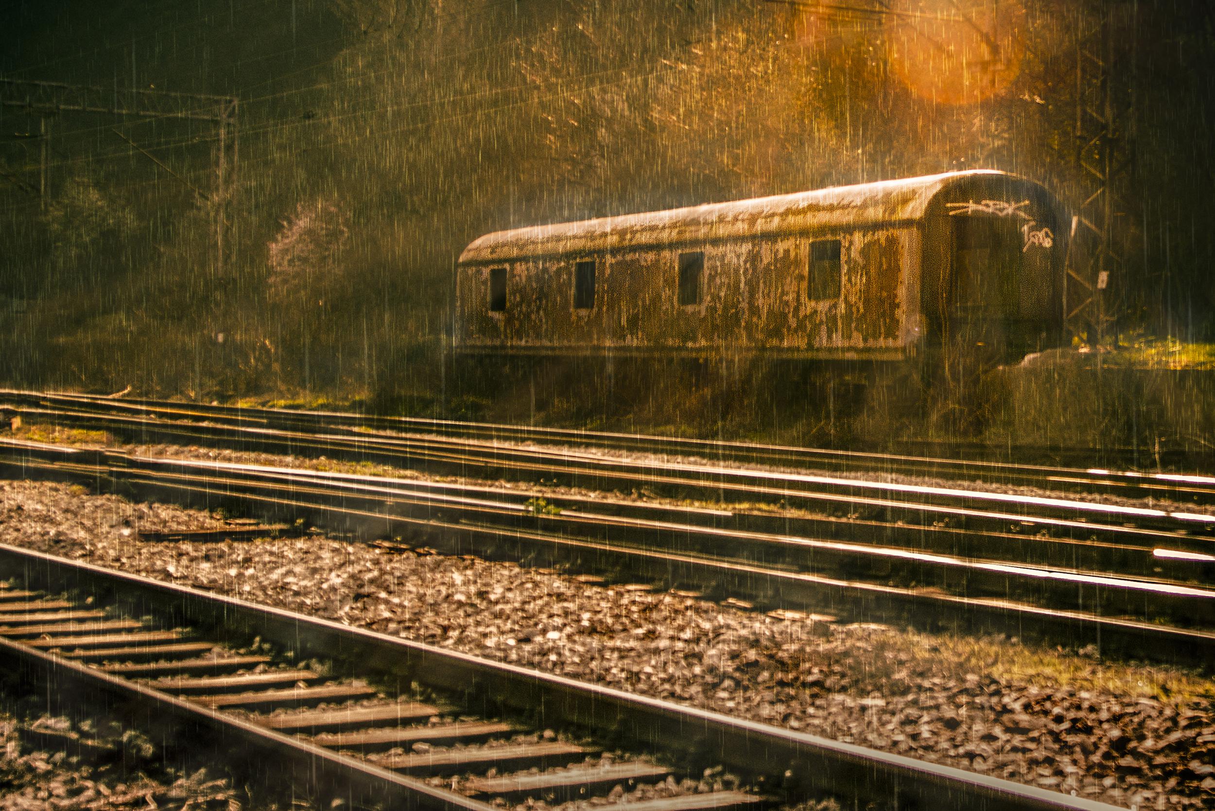 voz sine post vagon dzungla suma2.jpg