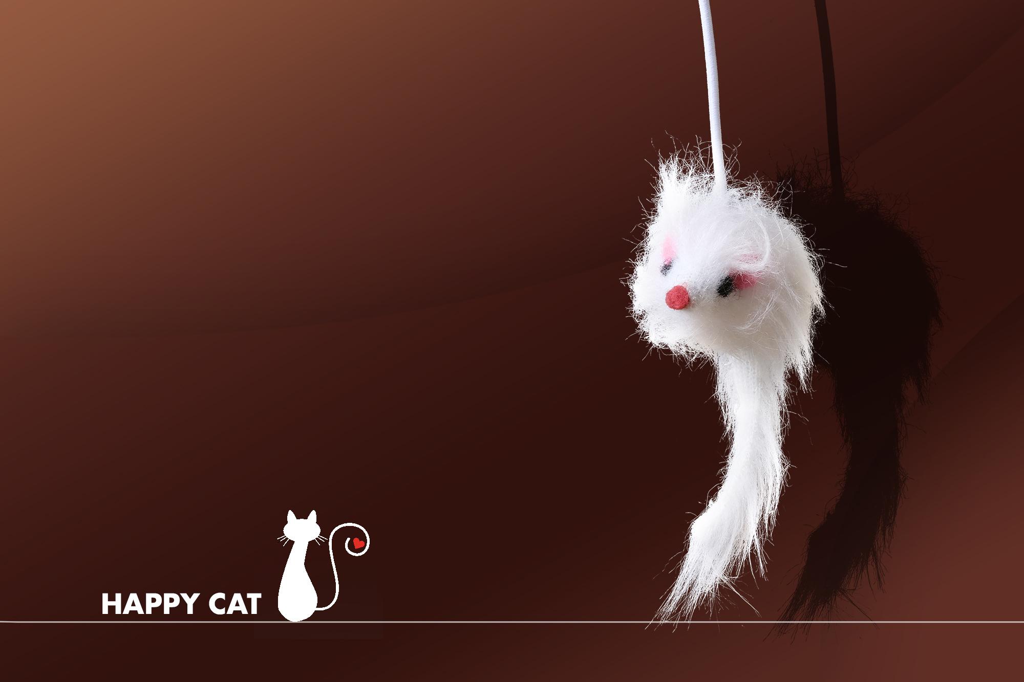 happy cat banner.jpg