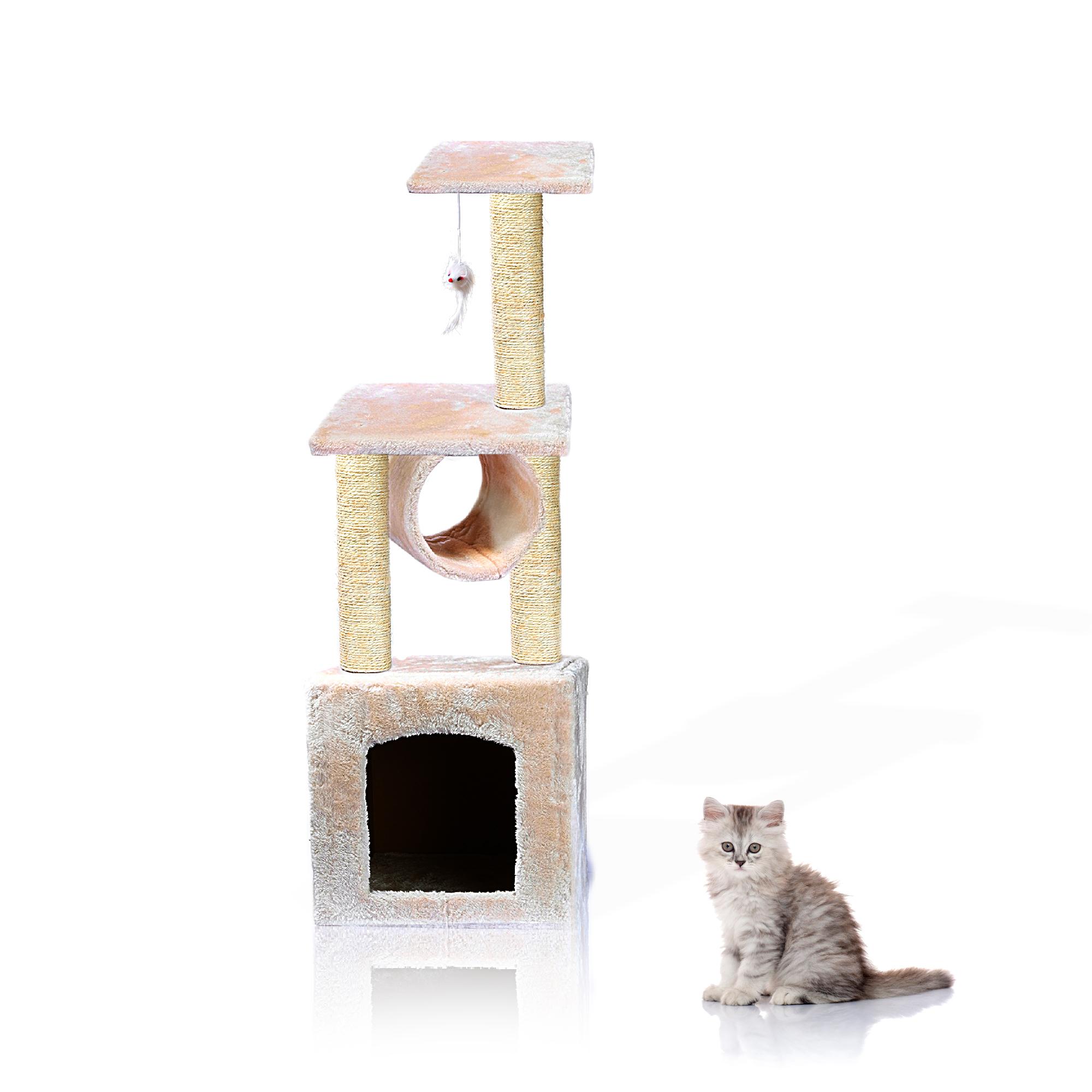 MAIN ISOLATED + cat.jpg