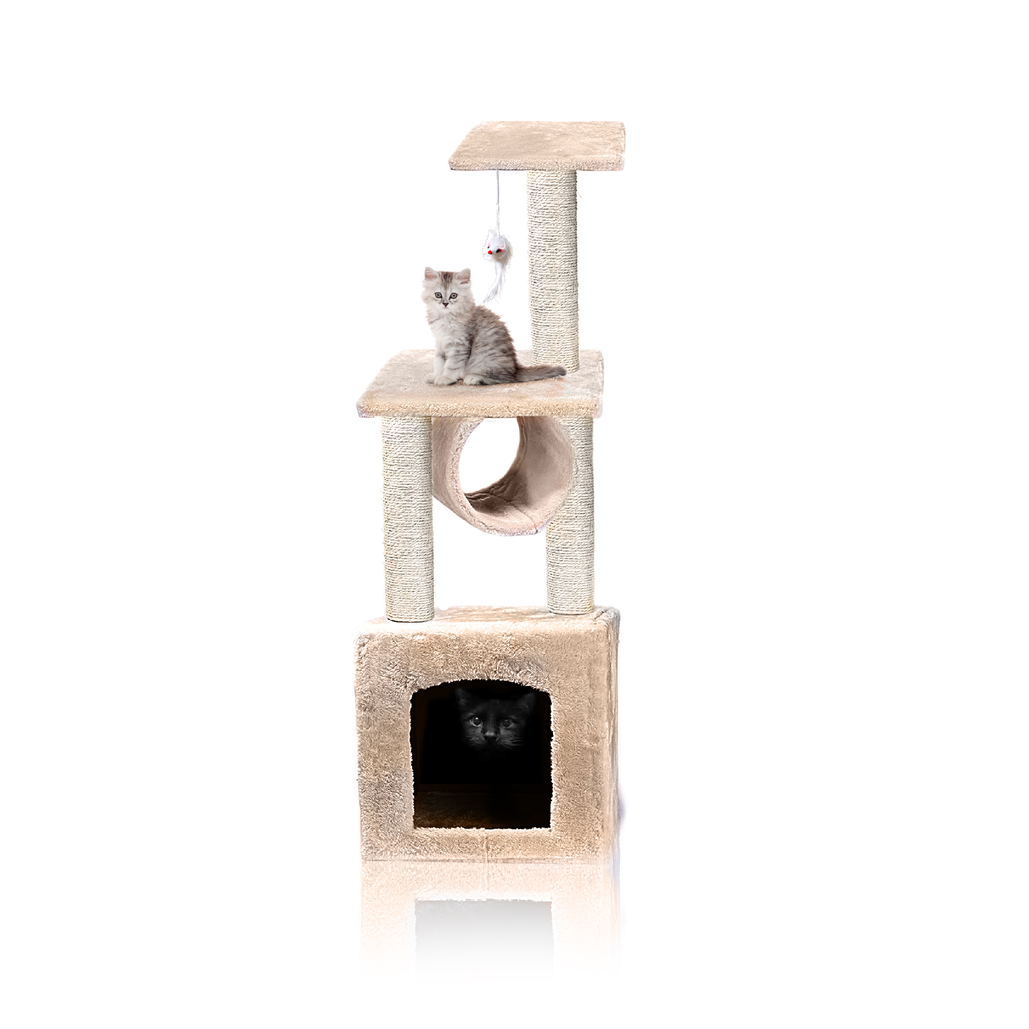 MAIN ISOLATED +2 cats shadow 3.jpg